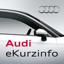Audi eKurzinfo (Audi)